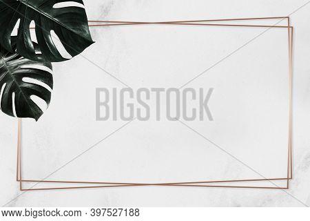 Monstera leaf gold frame plain background