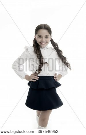 Happy Schoolgirl. Hairstyle For Schoolgirl Nice And Easy. Gorgeous Tails Perfect For Every Day Of We