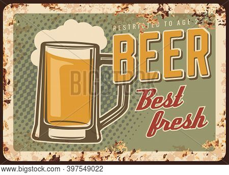 Freshly Brewed Beer Rusty Metal Vector Plate. Glass Tankard Or Mug Filled With Pale Lager Or Ale, Fo