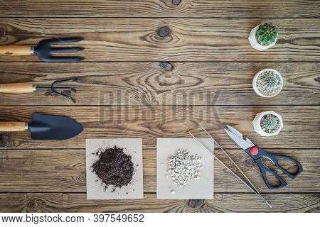 Gardening Tools And Set Of Plant Care Utensils On Wooden Table, Top View, Garden Maintenance Landsca