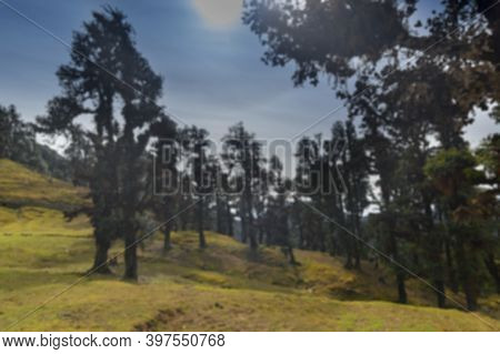 Blurred Image Of Sun Shining On Bugyals, Alpine Pasture Lands, Or Meadows, In Higher Elevation Range
