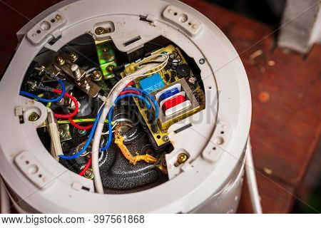 The Rice Cooker Had Short Circuit Due To A Lizard Inside. A Lizard Dies In The Circuit Of An Electri