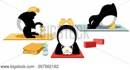 Three Penguins Enjoy Doing Inversion Balancing Yoga. All Asanas From Headstand To Downward Facing Do