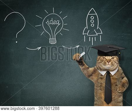 A Cat In A Black Tie And An Academic Hat Points To A Picture That Is Drawn On The Chalkboard.