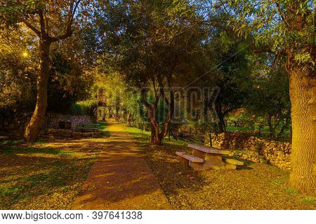 View Of A Picnic Area With Trees, Fall Foliage, And The Kesalon Stream, In En Hemed National Park (a