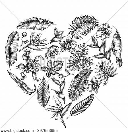 Heart Floral Design With Black And White Monstera, Banana Palm Leaves, Strelitzia, Heliconia, Tropic