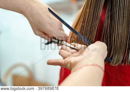 Close Up Of Hairdresser Hands Cutting Brown Hair At Home. Professional Stylist Trimming Hair Split E