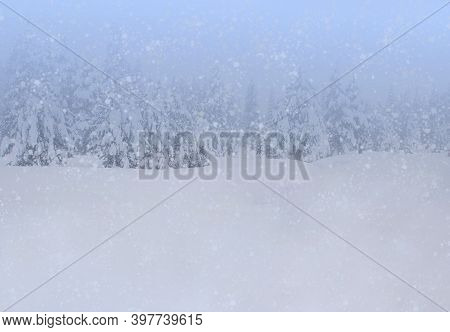 Winter Background With Snowfall And Snowy Forest.