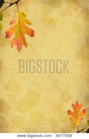 Oak Leaf Background