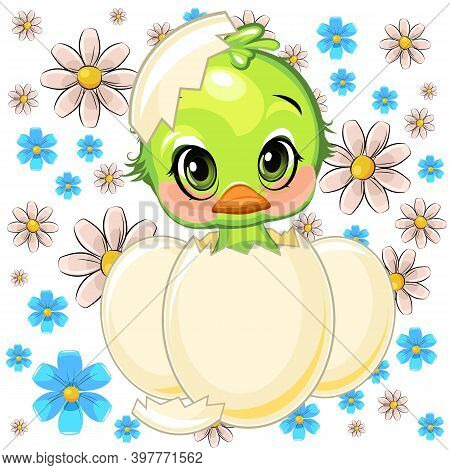 A Little Parrot Hatched From An Egg. Funny Chick. Cute And Funny Baby Bird. The Isolated Object On A