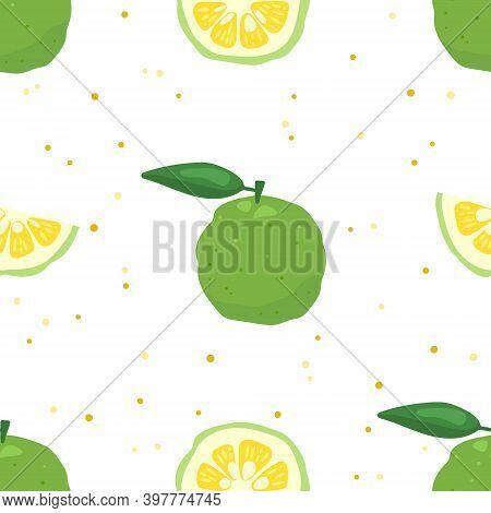 Green Yuzu Japanese Citron Fruit Seamless Pattern Vector Illustration Isolated On White Background.