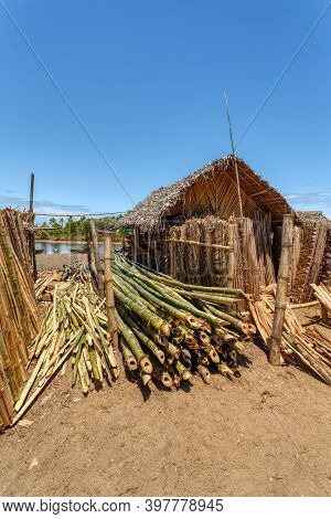 Sale Of Firewood On Street Marketplace In Maroantsetra City, Madagascar. Madagascar Has Lost More Th