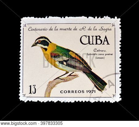 Cuba - Circa 1971 : Cancelled Postage Stamp Printed By Cuba, That Shows Cuban Western Spindalis (spi