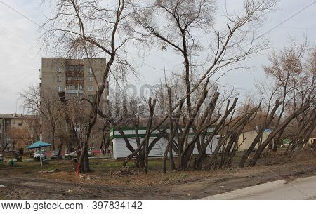 Russia, Novosibirsk, 30.10.2019: Dirty Unkempt Yard In The City With Pruned Trees