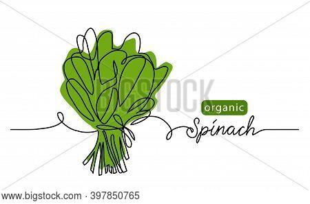 Spinach, Organic Green Leaf, Salad Bunch. Vector Illustration, Background. One Line Drawing Art Illu