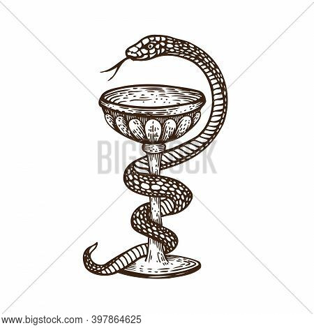 Hand Drawn Antique Vintage Style Vector Illustration. The Hygea Vessel Is One Of The Symbols Of Phar