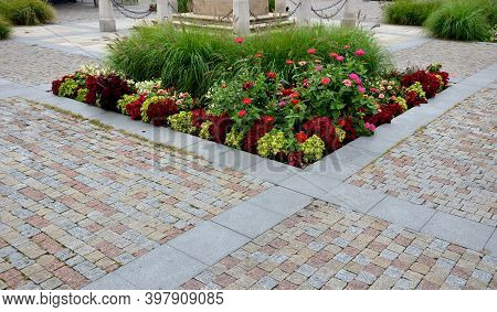Perennial Flower Beds With Annual Plantations On The Edge Of The Flower Bed In Paving On The Granite