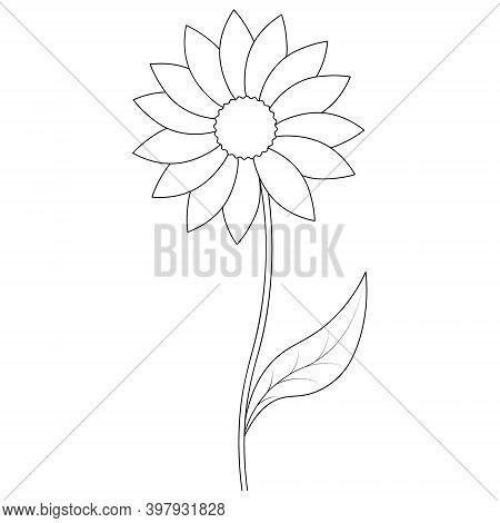 Flower. Sketch. Vector Illustration. Outline On An Isolated White Background. Doodle Style. Coloring