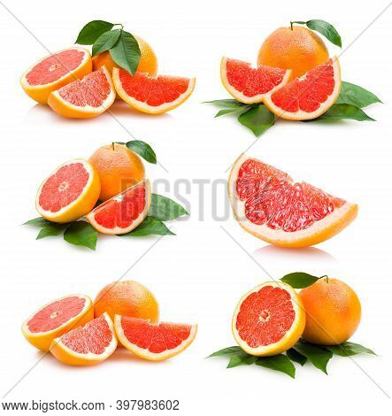 Colorful Orange Branches And Floral Flat Item Set. Cartoon Drawing Collection Of Isolated Orange, Ta