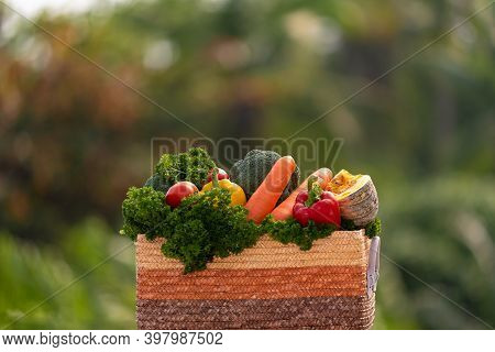 Autumn Harvest, Seasonal Vegetables, Pumpkin, Carrots, Tomatoes, Curly Parsley, Bell Peppers, Brocco