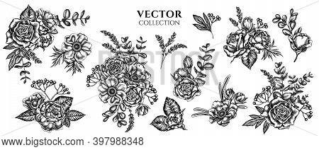 Flower Bouquet Of Black And White Roses, Anemone, Eucalyptus, Lavender, Peony, Viburnum Stock Illust