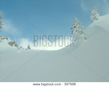 Snow At Ljubi�nja Mountain
