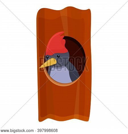 Woodpecker Tree Home Icon. Cartoon Of Woodpecker Tree Home Vector Icon For Web Design Isolated On Wh