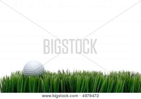 A White Golf Ball In Green Grass