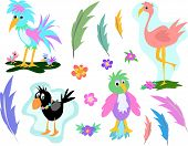 Here is a collection of birds flowers and feathers. poster