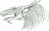 Sketched dragon's head illustration in vector form poster