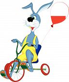 Cheerful gray hare rides a bicycle with three wheels poster