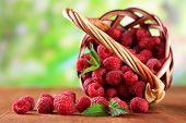 Ripe sweet raspberries in basket on wooden table, on green background