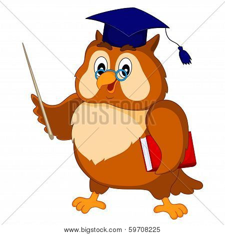 wise owl in the academic cap with a book and a wand poster