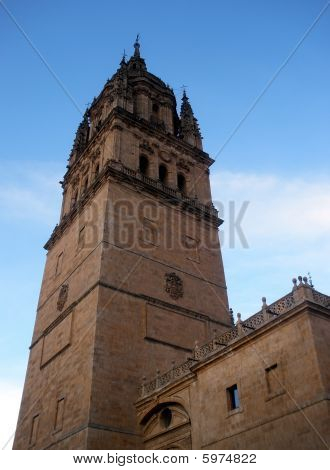 the cathedral of salamanca in spain