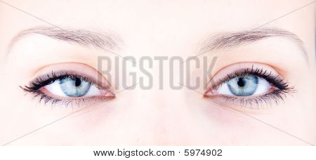 Picture Of Magnificent Woman's Eyes
