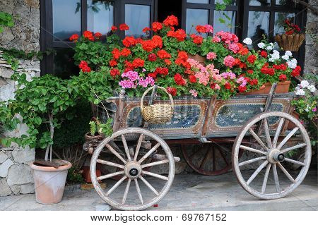 Flowers In The Cart