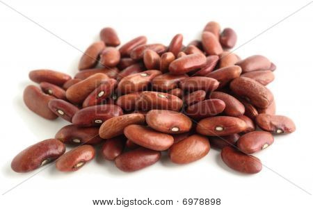 Kidney Beans Macro Side View