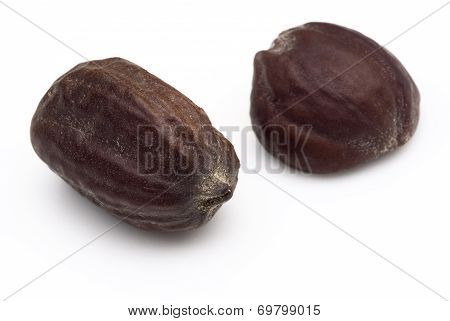 Jojoba Seeds (simmondsia Chinensis)
