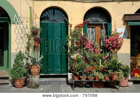 Storefront In Lucca, Italy