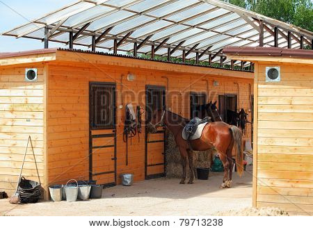 Horses at the stable of Riding Center