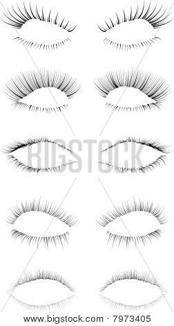 Eyelashes Set