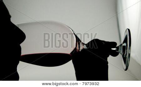 wine tasting silhouette