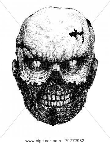 Zombie head. Hand drawn. Jpeg version.