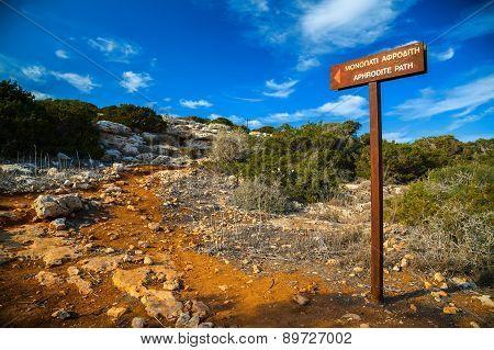 Walking Path Named
