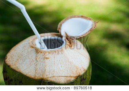 Coconut with straw
