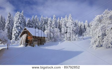 Winter Fairytale, Heavy Snowfall Covered The Trees And Houses In The Mountain Village