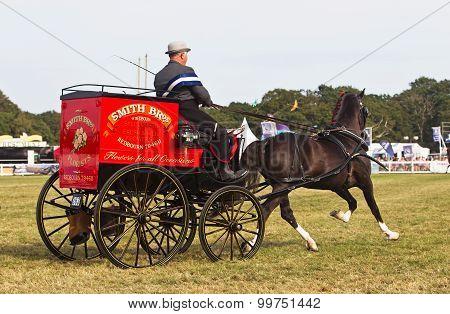 Hackney carriage