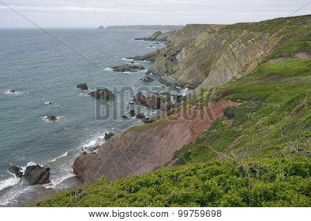 Cliffs Above Albion Sands