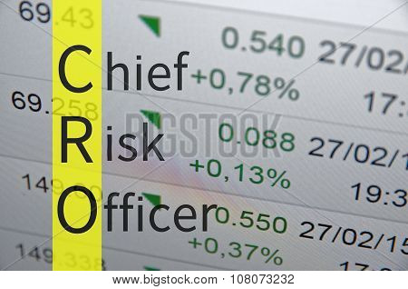 Chief risk officer