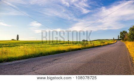 Tuscan Morning Landscape